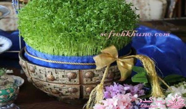 آموزش سبزه لبو آموزش تزیین سفره هفت سین سبزه لبو لبو سبز کنین - زیباکده
