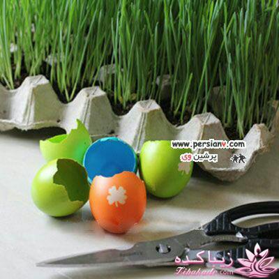 انواع بذر هفت سین ایده ای زیبا برای سبزه ی سفره هفت سین - زیباکده